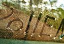 Climatisation allergie pollen